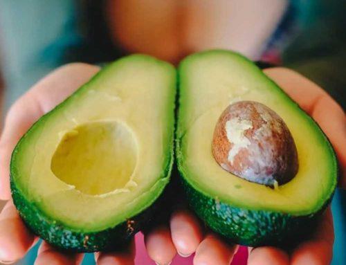 Vegetariano, encuentra tus fuentes de proteínas
